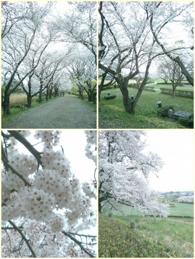 2015-04-04 12.03-tile